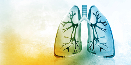 The Multidisciplinary Center for Diagnosing and Treating Lung Cancer